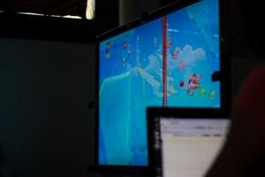 Rayman ECG data