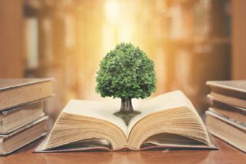Arbre qui pousse dans un livre